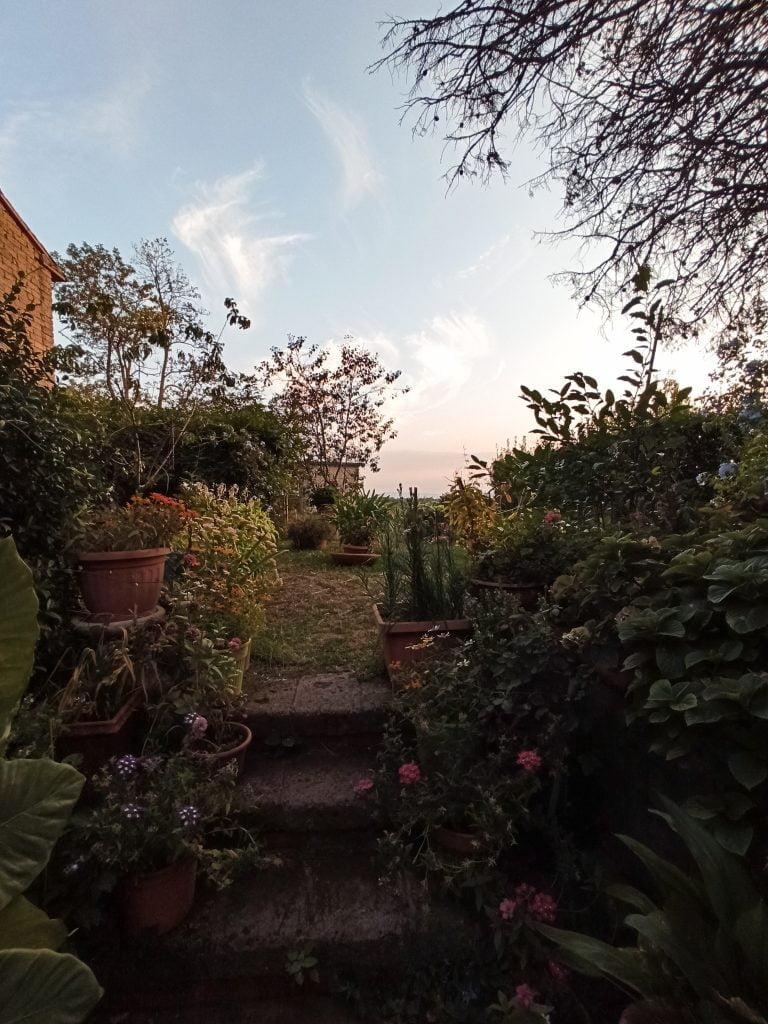 Giardino fiorito a Civita di Bagnoregio